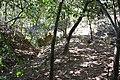 Alto Araguaia - State of Mato Grosso, Brazil - panoramio (236).jpg