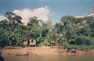 House in Amazon Rainforest.