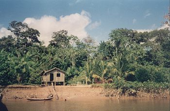 House in Amazon Rainforest.