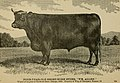 American farming and stock raising, with useful facts for the household, devoted to farming in all its departments (1892) (14595581789).jpg