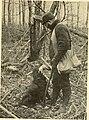 American game-bird shooting (1910) (14752298161).jpg