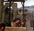 Amico aspertini, adorazione dei magi, 1499-1500 ca., da s.m. maddalena di galliera, 02 pastori.jpg