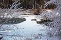 An Icy Pool on the Water of Girvan - geograph.org.uk - 1657566.jpg