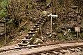 Anbo Forest Railway 02.jpg