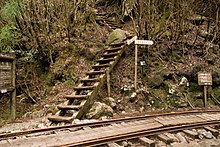 Anbo Forest Railway 02.jpg