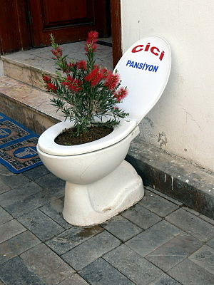 Antalya ( Turkey ). Toilet seat used as flower...