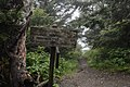 Appalachian Trail, summer 2018--Chalice Keith (30991987668).jpg