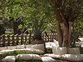 Aquarium Grotto Garden March 2013 by Hatem Moushir 9.JPG