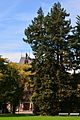 Arboretum (Zürich) 2012-10-06 13-46-23.JPG