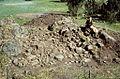 Archaeological excavation, Häggum, Västergötland, Sweden (17928531455).jpg