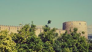 Arg of Karim Khan - Outside the castle