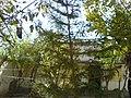 Arsalan Home - panoramio.jpg