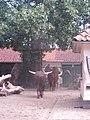 Artis, Zoo, Dierentuin - panoramio (1).jpg