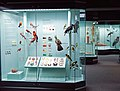 Augsburg Naturmuseum - birds and butterflies.jpg