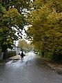 Auru street.JPG
