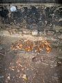 Aushub per Bagger 1m Alter St. Nikolai-Friedhof Nikolaikapelle Hannover, 12a Schädelknochen Gebeine durch Sid Auffahrt angehäuft.jpg