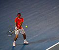 Australian Open 2010 Quarterfinals Nadal Vs Murray 6.jpg