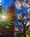 Autumn in downtown Lancaster, PA.jpg
