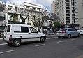 AvCabildo300-1.jpg