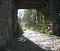 Avon & Glos. Railway. - panoramio - Bob&Anne Powell.jpg