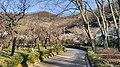 Bairin Park-2.jpg