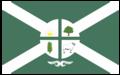 Bandeira Oficial da Cidade de Dom Eliseu-PA.png