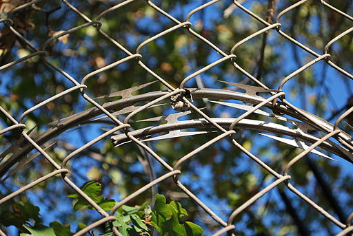 Barbed tape behind a chain link fence