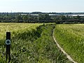 Barley fields at Didcot - geograph.org.uk - 181906.jpg