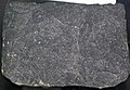 Basalt (Newark Supergroup, Lower Jurassic; Watchung Mountain, Orange, New Jersey, USA) (26557224917).jpg