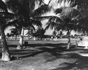 Bayshore (Miami Beach) - Golf course in Bayshore, 1928
