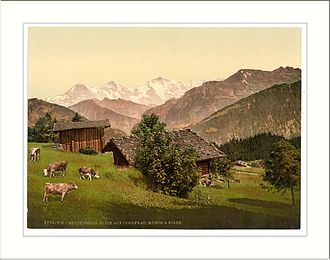 Beatenberg - Early 20th century postcard of the Bernese Oberland from Beatenburg