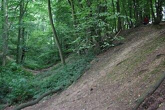 Beech Bottom Dyke - Image: Beech Bottom Dyke (3)