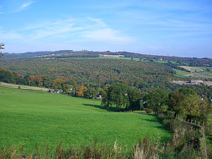 Beeley Wood - Beeley Wood seen from the south-west across the upper Don valley