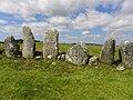 Beltany Stone Circle - detail - geograph.org.uk - 1925605.jpg