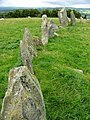 Beltany stone circle - geograph.org.uk - 399126.jpg
