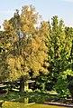 Belvoirpark - Hotelfachschule 2011-08-13 18-57-52.jpg