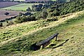 Bench on Black Hill - geograph.org.uk - 1480538.jpg