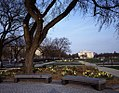 Bench on the National Mall 16652v.jpg