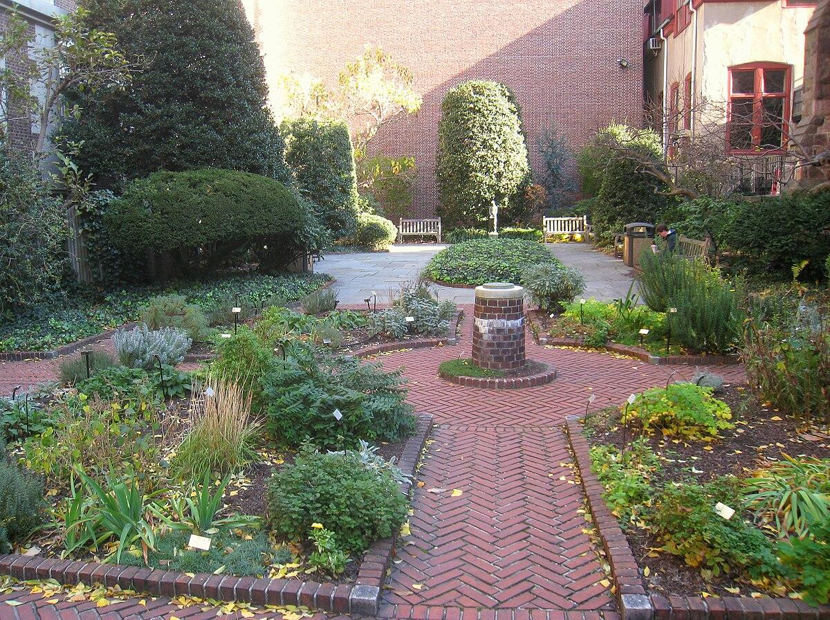 Jard n de plantas medicinales benjamin rush wikipedia for Plantas pequenas para jardin