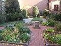 Benjamin Rush Medicinal Plant Garden - IMG 7239.JPG