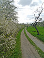 Berger-Hang-April-2013-Ffm-400.jpg