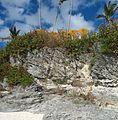 Bermuda (UK) Number 173 rock formations.jpg