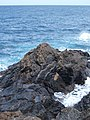 Betancuria, 35637, Las Palmas, Spain - panoramio (45).jpg