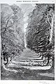 Betchworth Avenue by W Monk RE, in the Art Journal page 67.jpg
