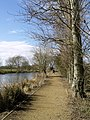 Beverley Beck Footpath - geograph.org.uk - 733108.jpg