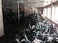 Bikes on ferry.jpg