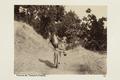 Bild från familjen von Hallwyls resa genom Algeriet och Tunisien, 1889-1890 - Hallwylska museet - 92025.tif