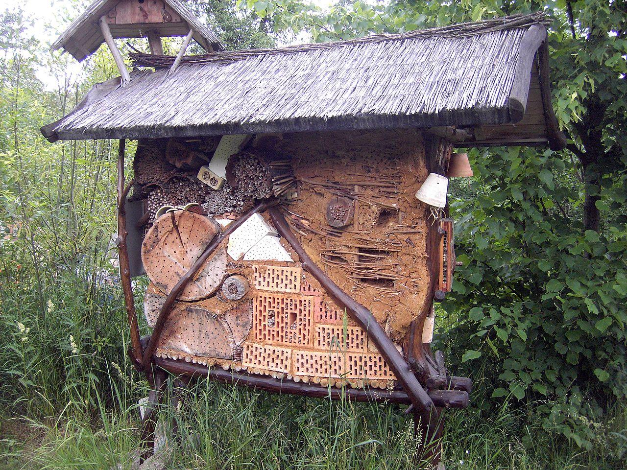 file biosphaerenreservat mittelelbe insektenhotel jpg. Black Bedroom Furniture Sets. Home Design Ideas