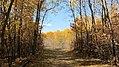 Birds Hill Provincial Park, Manitoba (481681) (9448043626).jpg