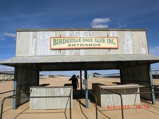 Birdsville Racetrack - panoramio (7)